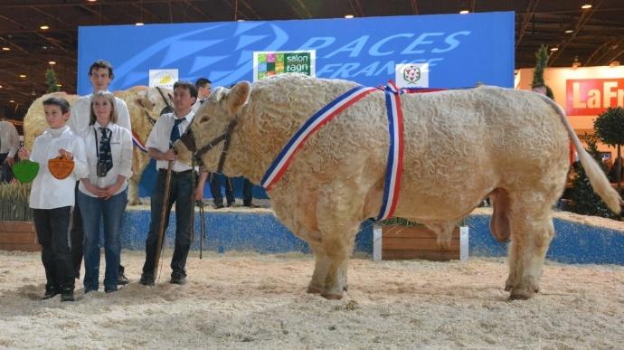 Le taureau le plus lourd du monde s 39 appelle f tard meat me - Salon agriculture tarif ...